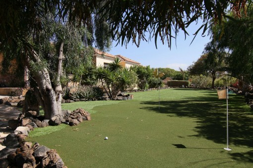 Private golf court